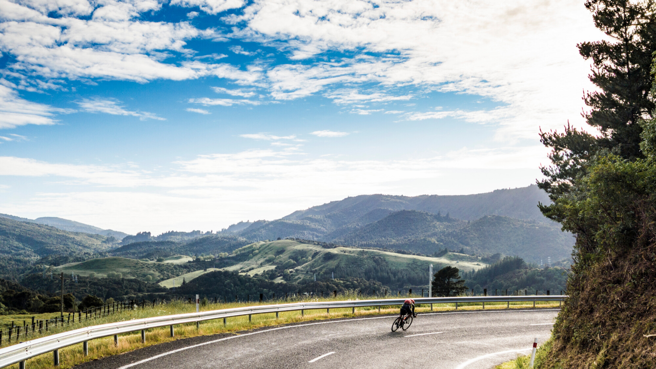 Road Bike Rentals in Auckland, New Zealand | Livelo